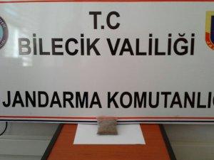YOLCU OTOBÜSÜNDE BONZAİ