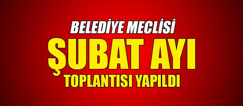 BELEDİYE MECLİSİ ŞUBAT AYI TOPLANTISI YAPILDI