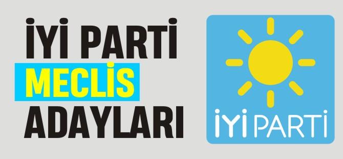 İYİ PARTİ MECLİS ADAYLARI