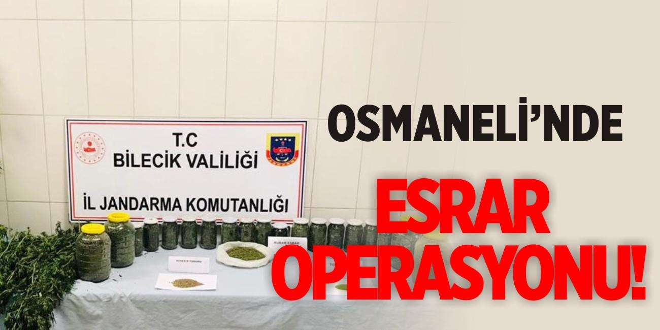 Osmaneli'nde esrar operasyonu!