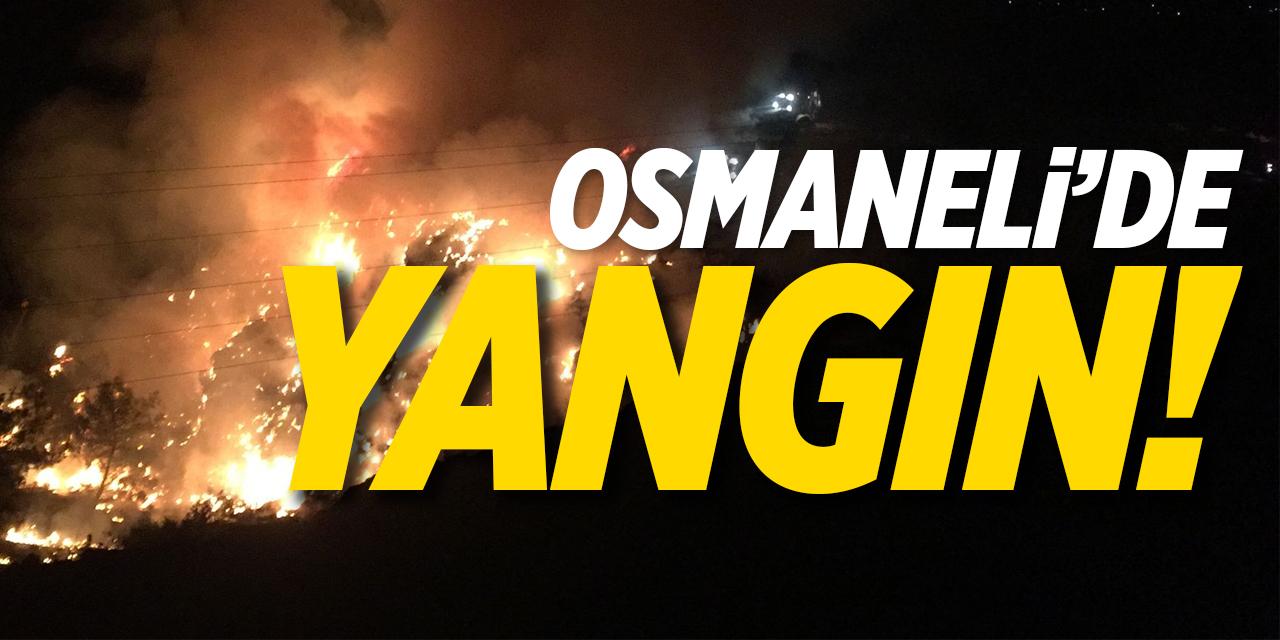 Osmaneli'de Yangın!