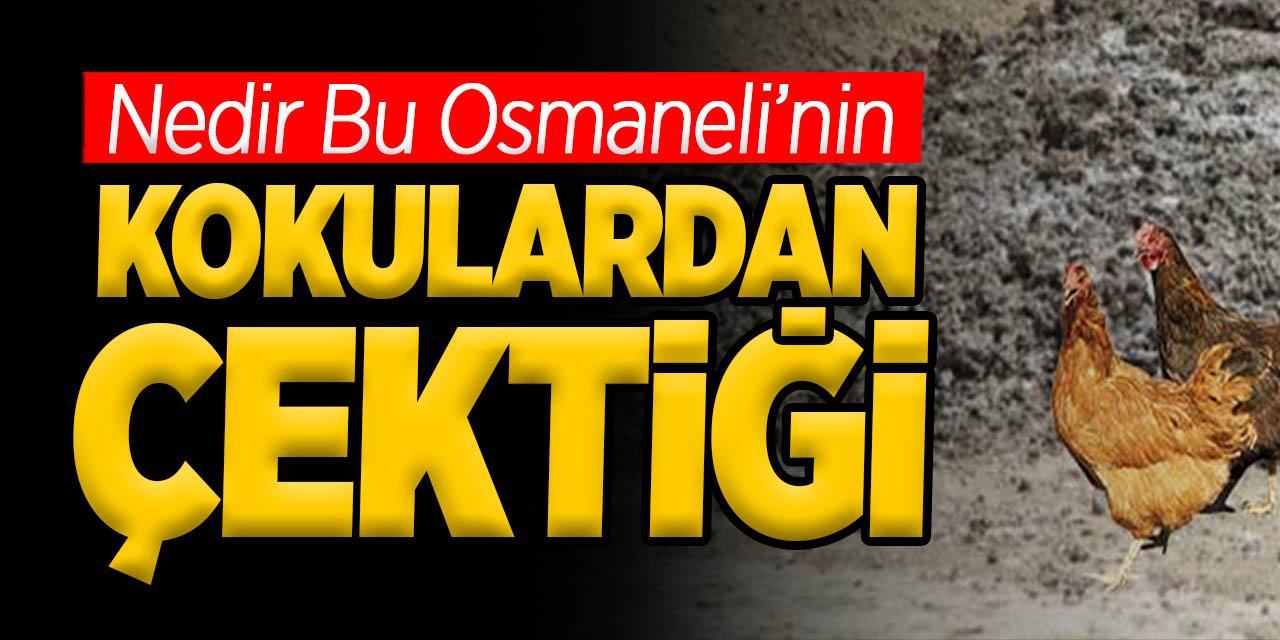 Nedir Bu Osmaneli'nin Kokulardan Çektiği