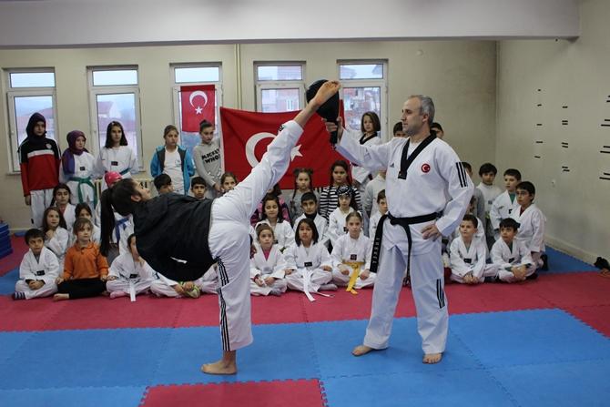 osmaneli-taekwondo.jpg