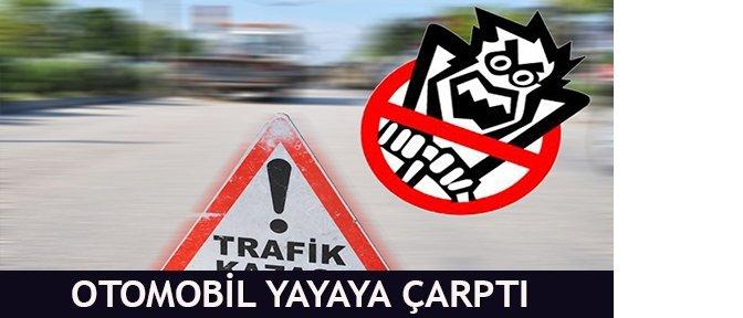 yayaya_carpti_.jpg